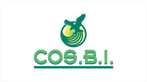 rebecchigroup-logo
